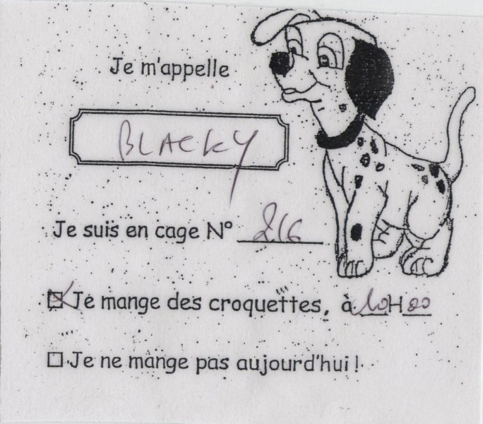 Blacky Disneyland