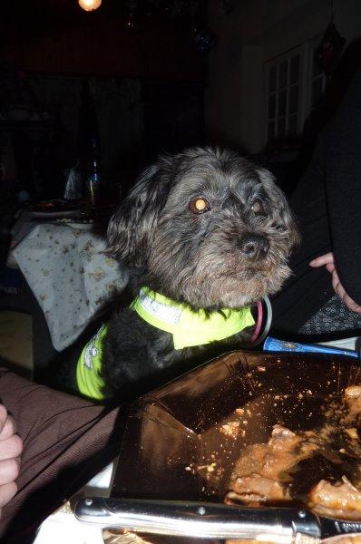 Blacky le vendredi 31 décembre 2010