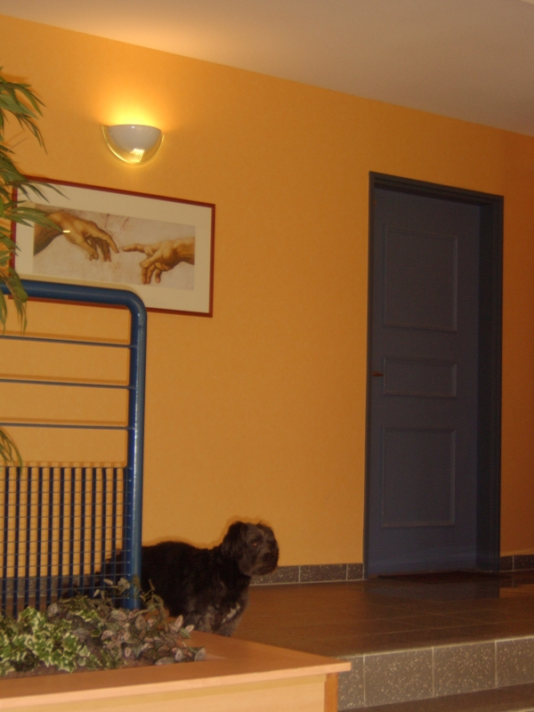 Blacky dans le hall d'entrée