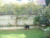 mardi-7-novembre-2006-85