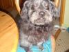 vendredi-3-novembre-2006-12_0