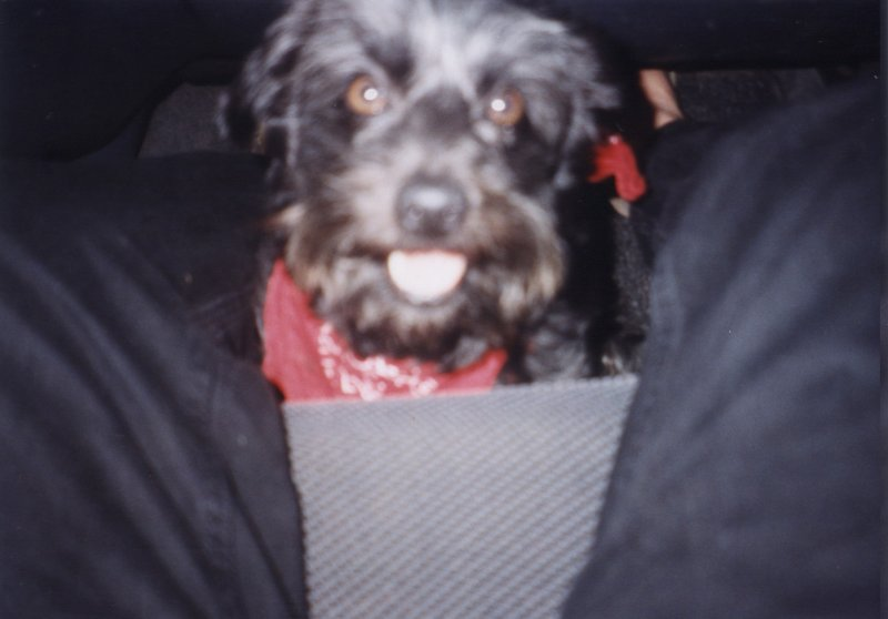 2001-05-01
