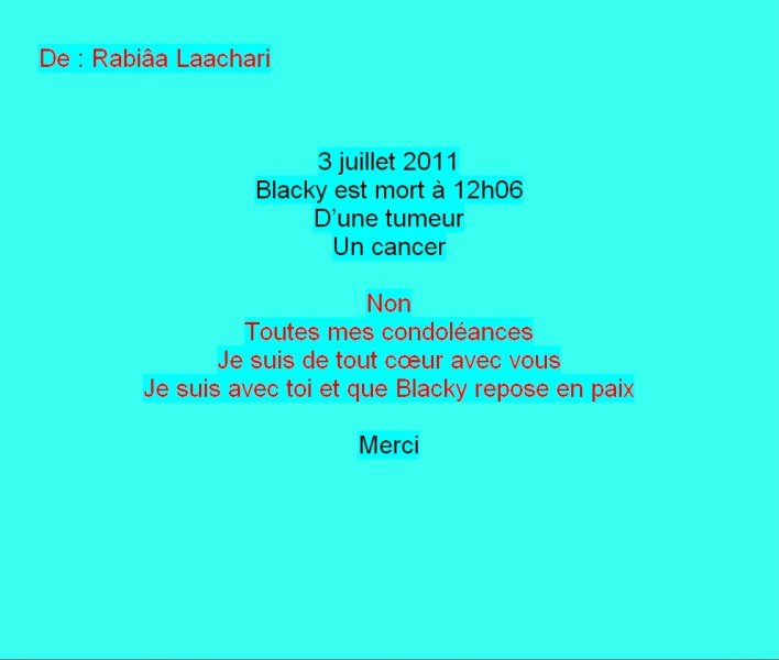 Message Facebook de Rabiâa Laachari