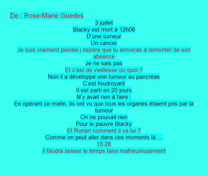 Message Facebook de Rose-Marie Guedes