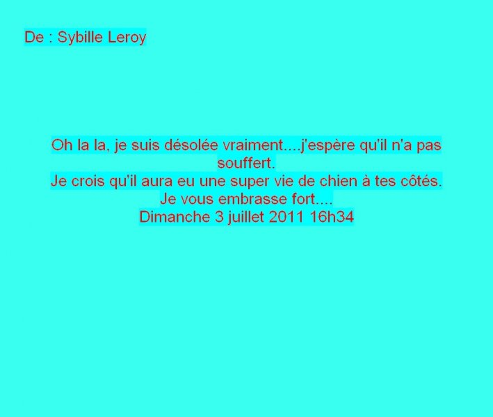 Message Facebook de Sybille Leroy