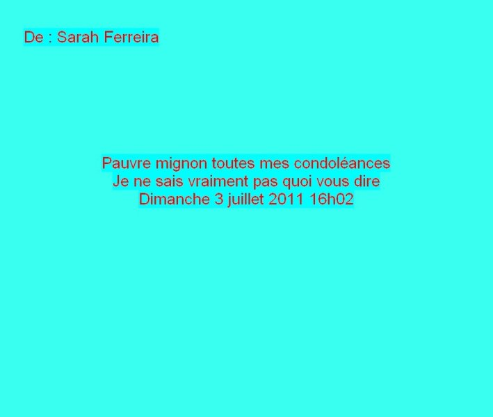 Message Facebook de Sarah Ferreira