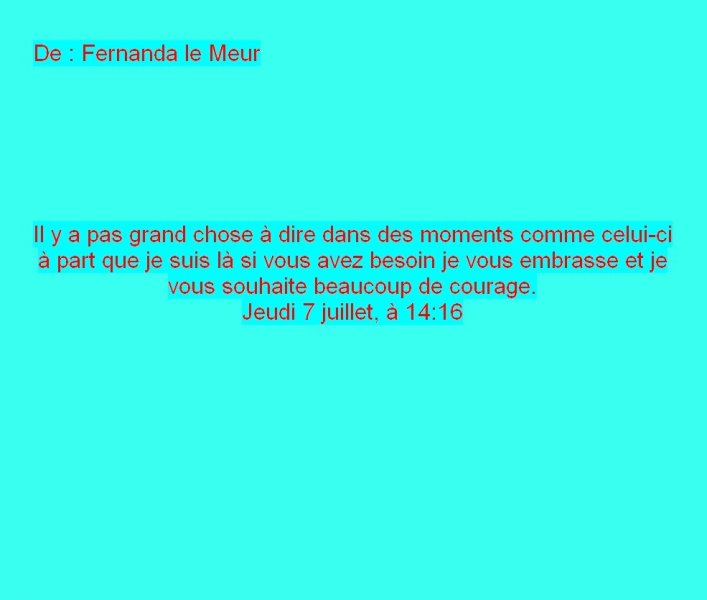 Message Facebook de Fernanda le Meur